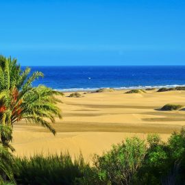 a view of the Natural Reserve of Dunes of Maspalomas, in Gran Canaria, Canary Islands, Spain